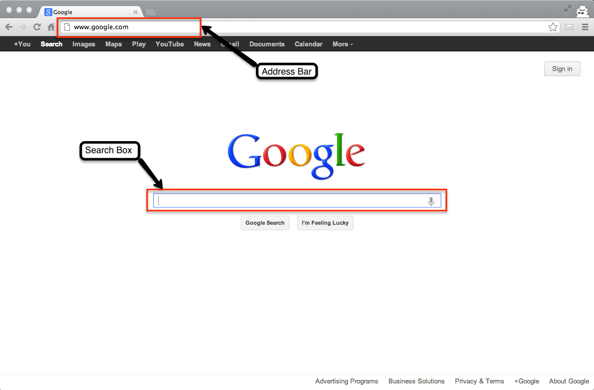 google-search-box